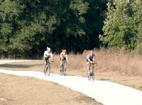 Bicycles near Suwannee Florida